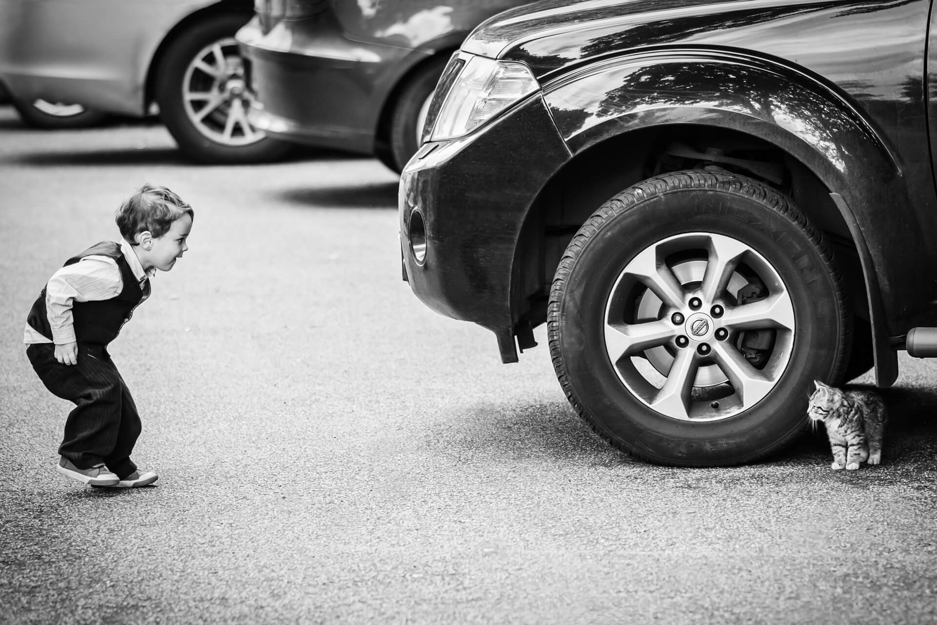 pageboy looking at a cat under a car wheel