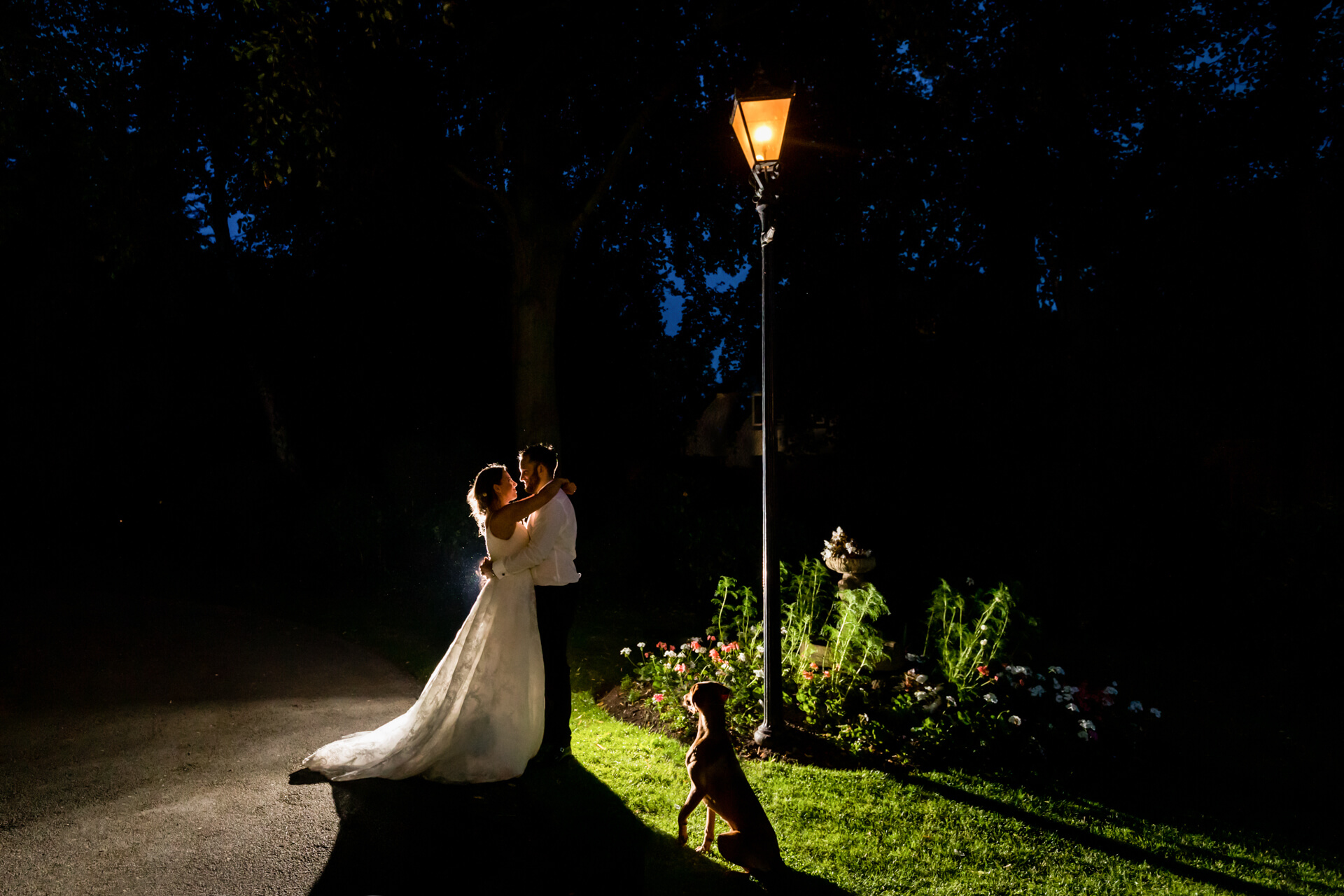 bride and groom and their pet dog standing by a out lamp at night