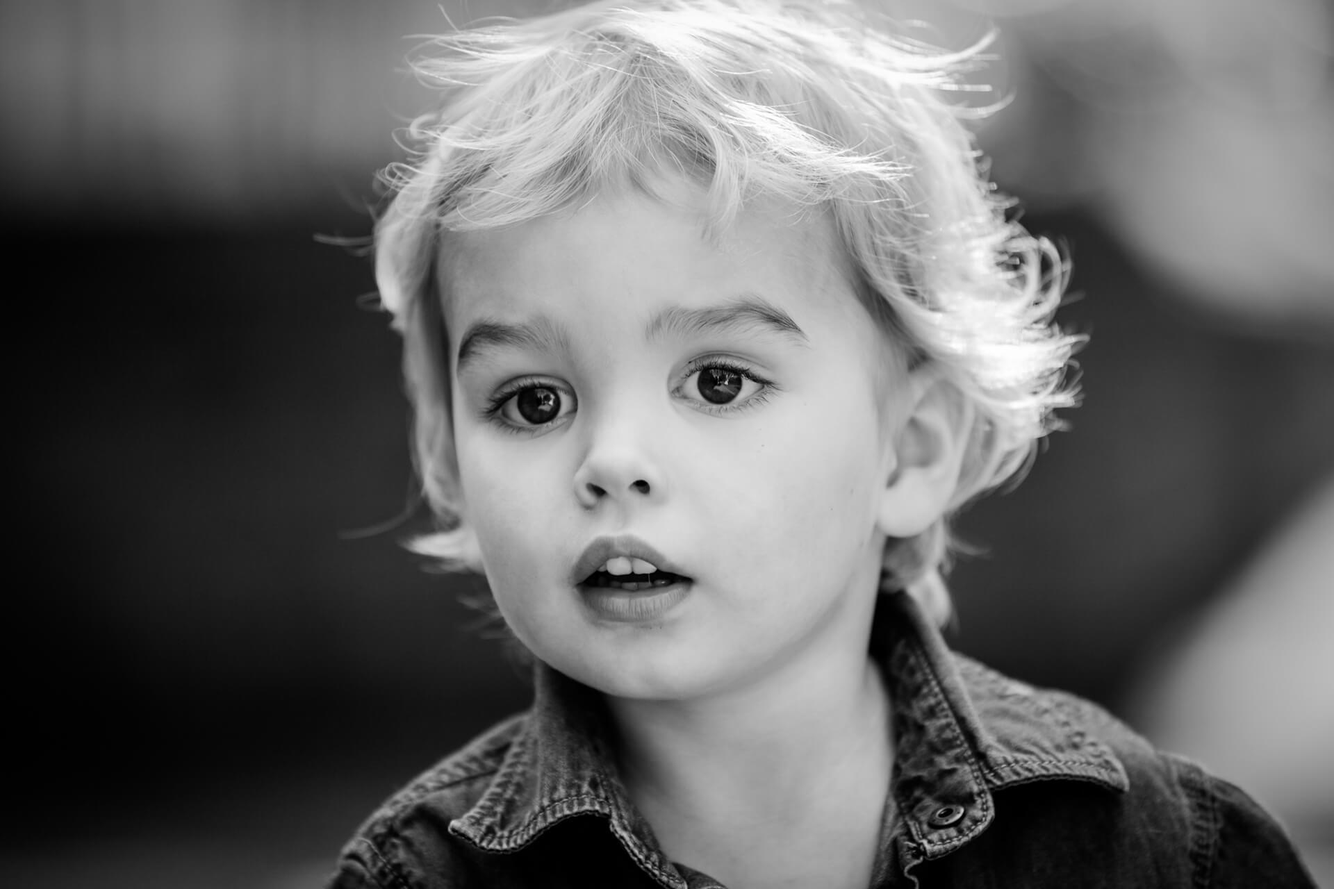 portrait of a toddler boy