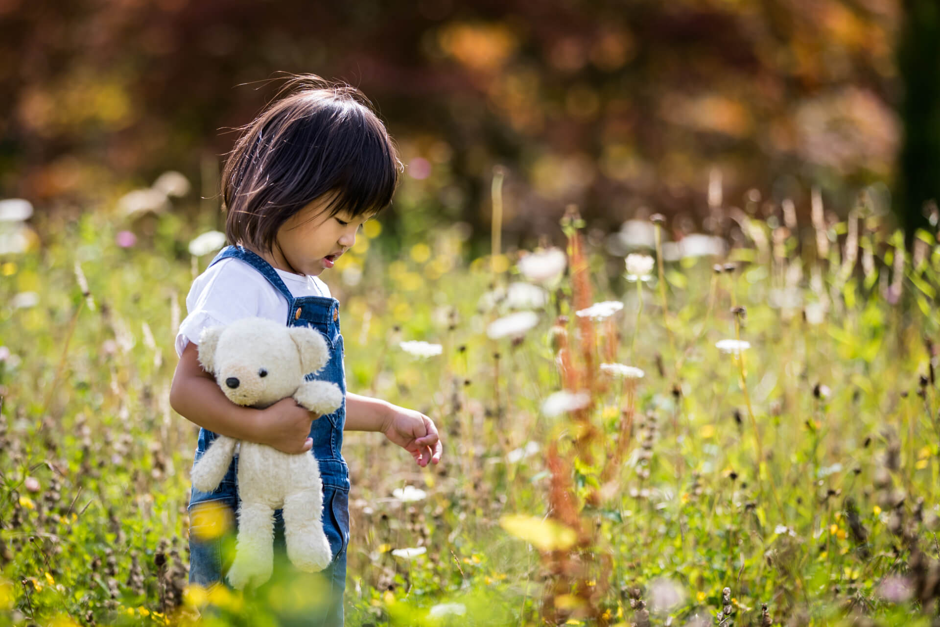 small girl picking flowers in a meadow in the Lake District