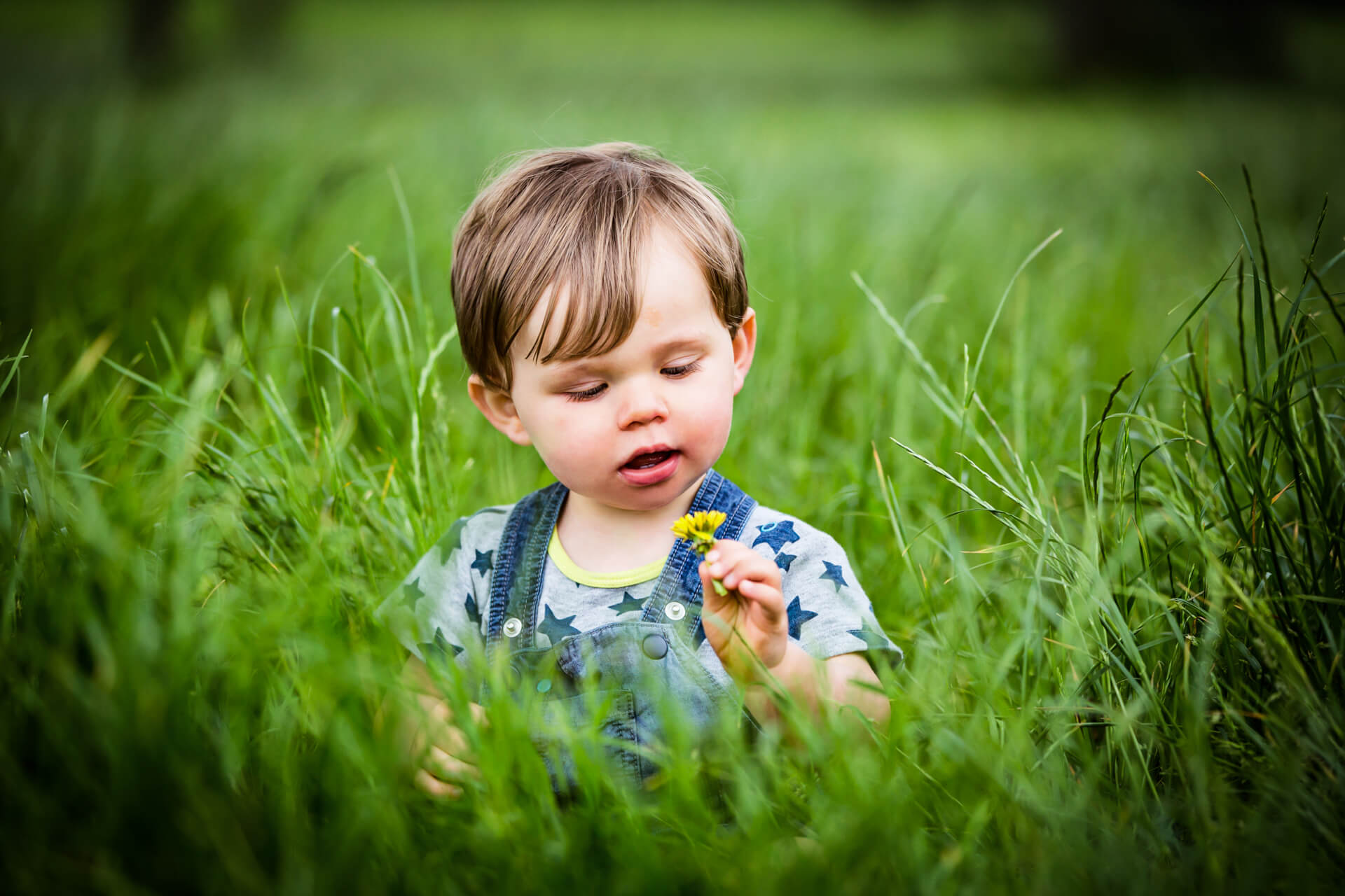 little boy sitting in long grass and looking at a flower