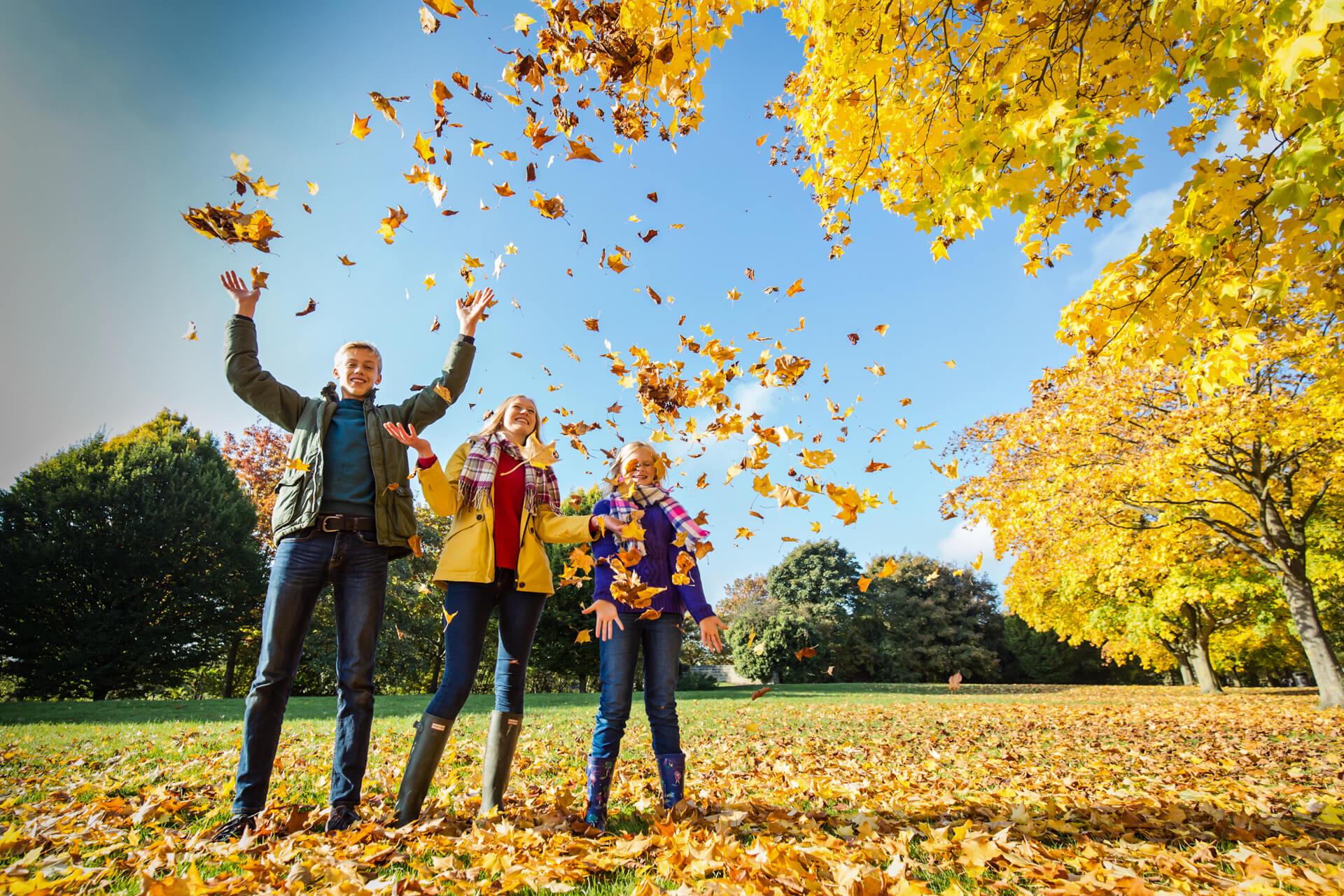 siblings throwing lots of autumn leaves in the air