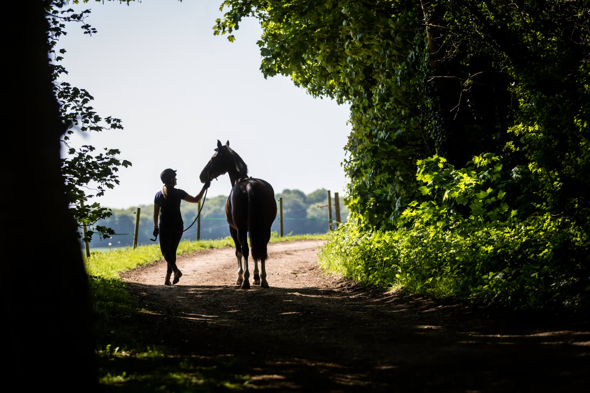 horse and rider walking together along a country path