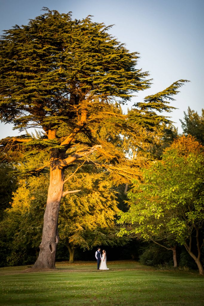 Saltmarshe Hall wedding photography, couple standing under a tree in the evening light