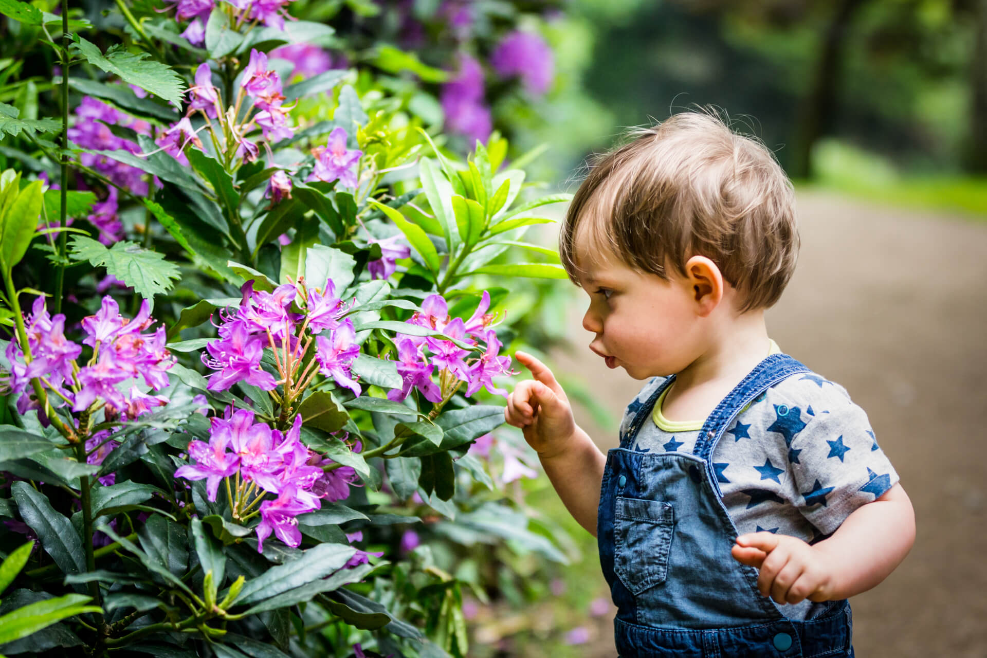 little boy looking at some flowers