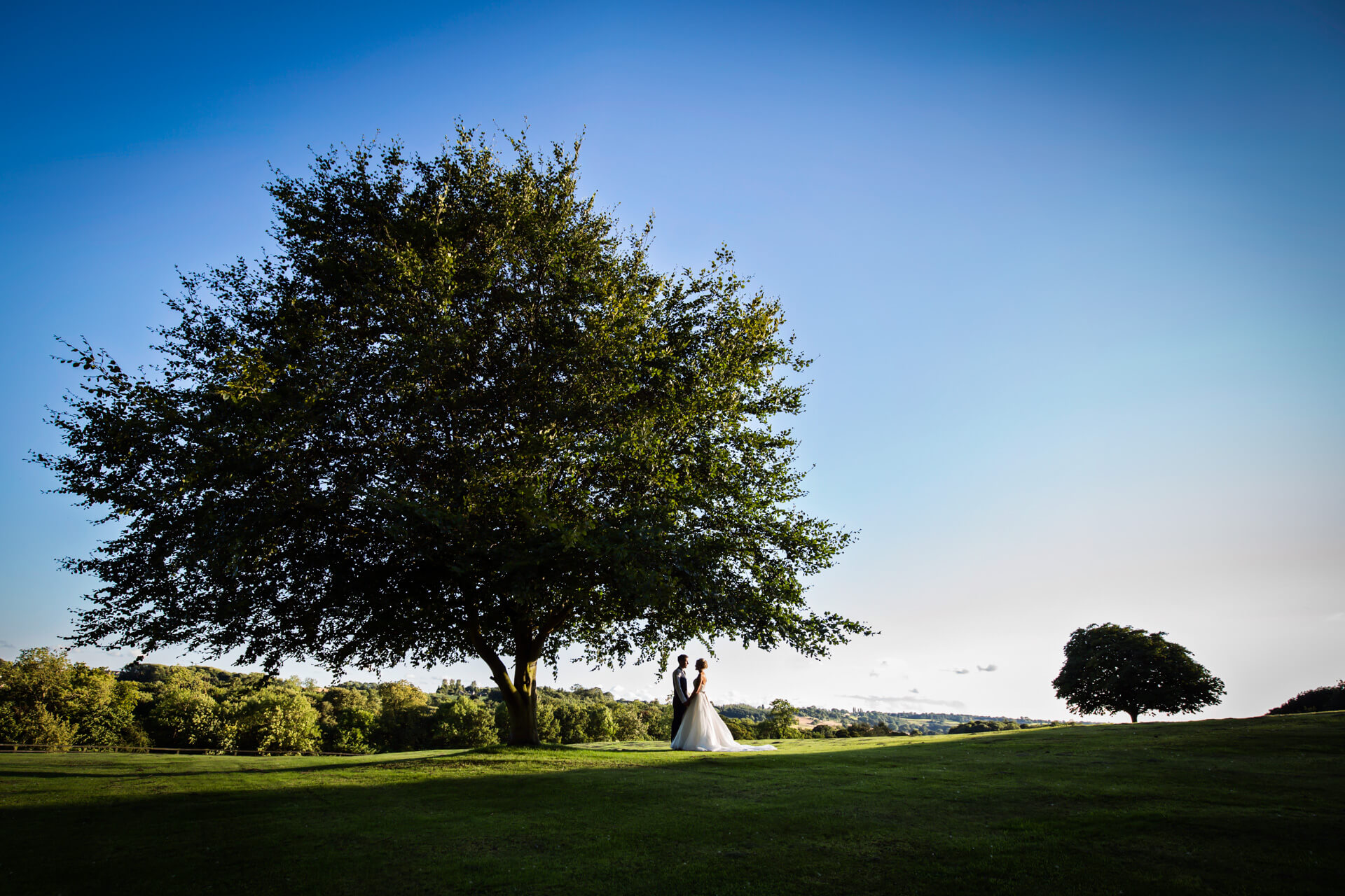 wedding couple under a tree at Woodhall hotel in Leeds