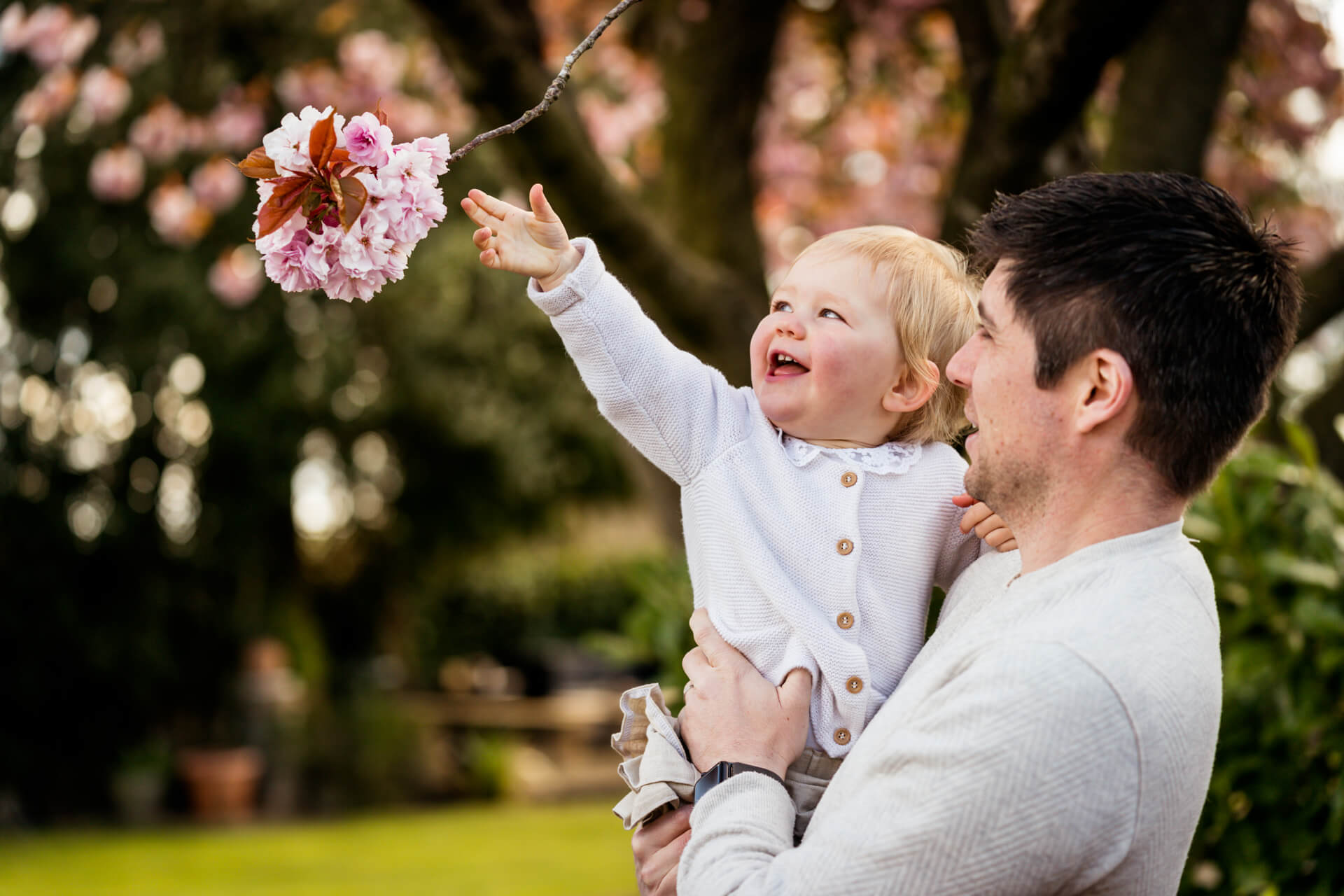 harrogate family photography- little girl reaching for a blossom