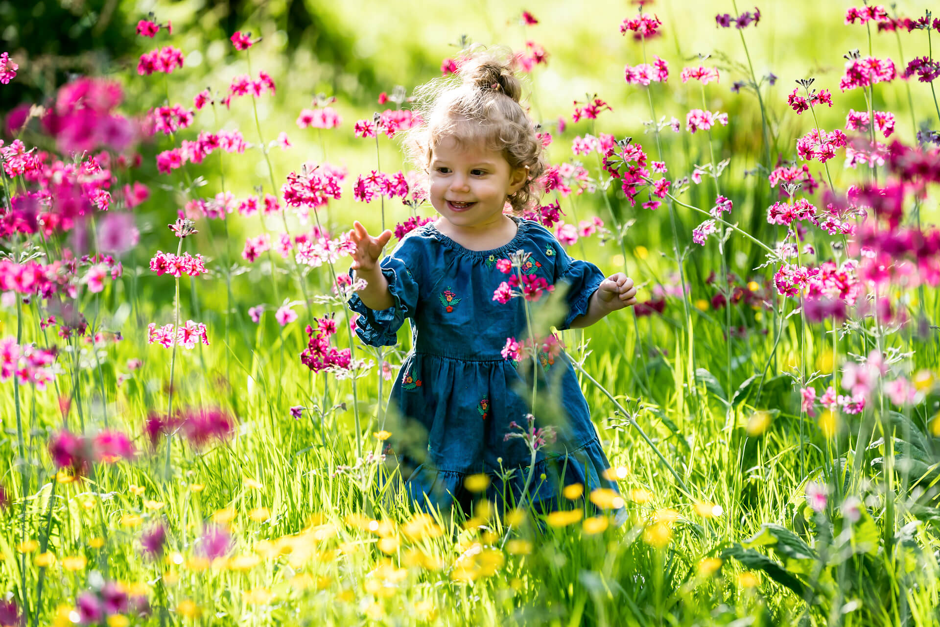leeds family photography- little girl walking in some tall flowers